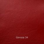 genisia 34
